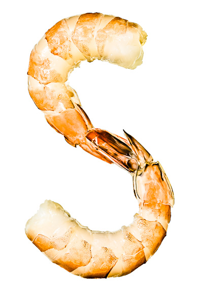 """Photo of two Shrimp, laid out in the shape of the letter """"S"""""""