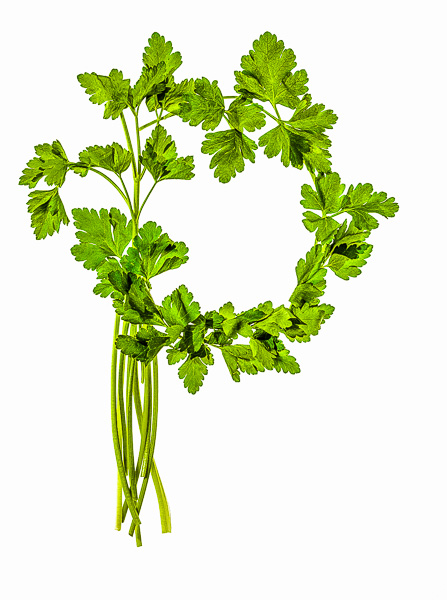 "Photo of Italian Flat Leaf Parsley, laid out in the shape of the letter ""P"""