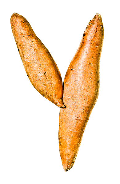 "Photo of Yams, laid out in the shape of the letter ""Y"""