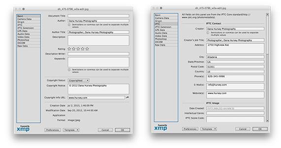 Photoshop File Info Window