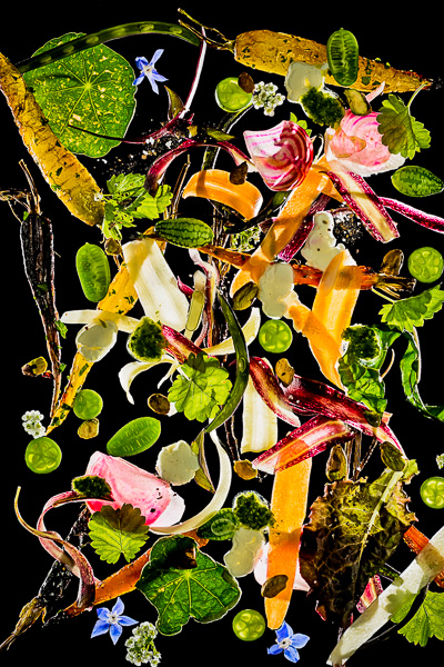 Photo of Salad Ingredients suspended in air against a black background