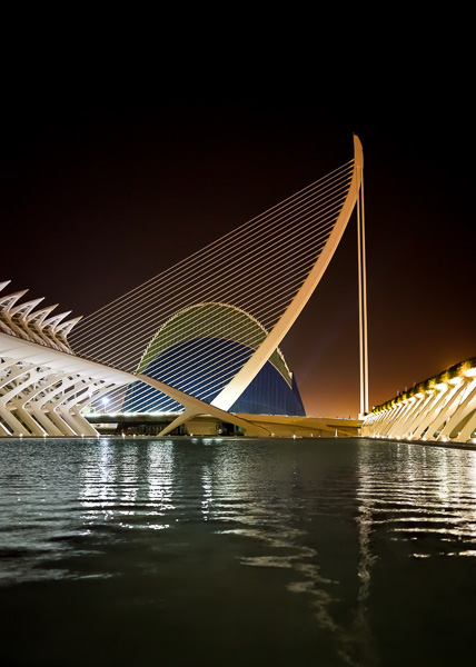 Nighttime Photograph of The City of Arts and Sciences Complex in Valencia Spain