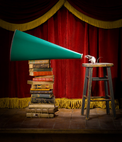 Photo of a mouse on a stool, speaking into a megaphone.