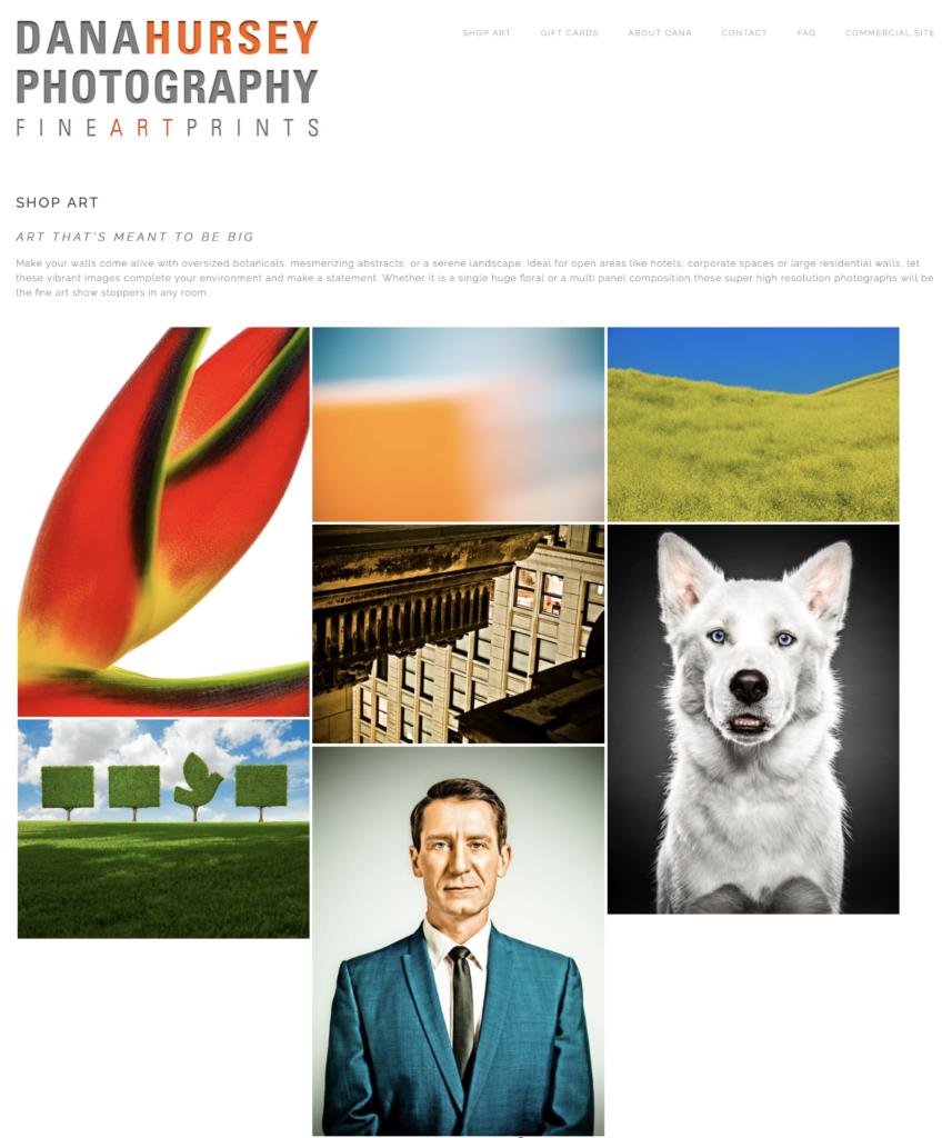 Image of the Dana Hursey Photography Fine Art Prints Website homepage