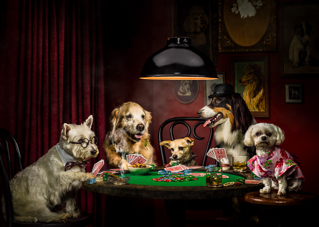 Photograph of Dogs Playing Poker